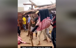 The video back a petition to President Akufo-Addo to shutdown the