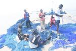 Artisanal fishermen in Central Region demand urgent end to Saiko