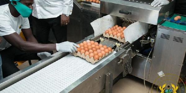 ID1F: Akufo-Addo inspects Akro Farms