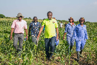 NSS boss, Mustapha Usif with some workers on a farm