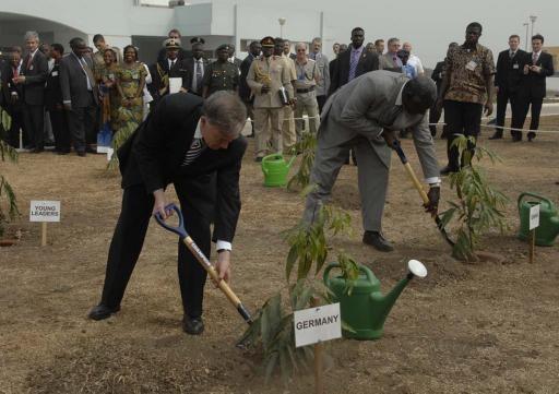 Planting symbolic tree