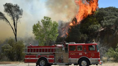 Photo report: Wildfires explained